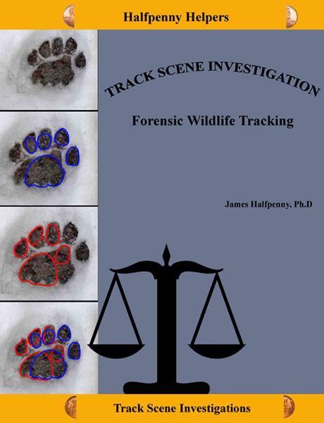 Track Scene Investigation: Forensic Wildlife Tracking