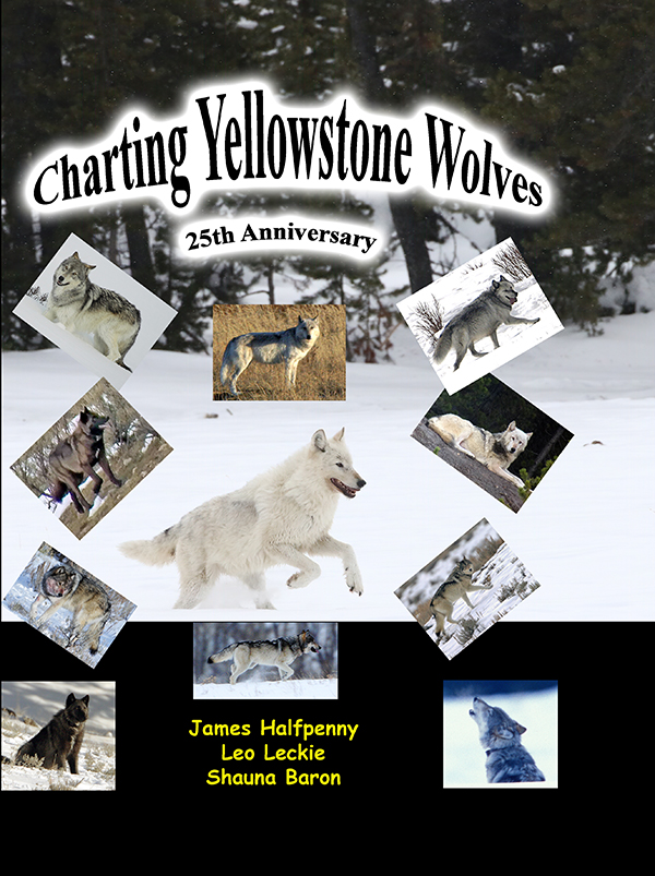 Charting Yellowstone Wolves: 25 Anniversary