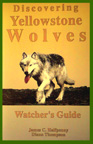 DISCOVERING YELLOWSTONE WOLVES