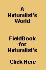 A NATURALIST`S FIELDBOOK.